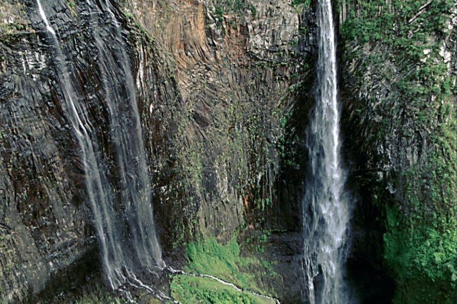 Trou de Fer, un immense puits au milieu de la forêt. (© Author's Image))