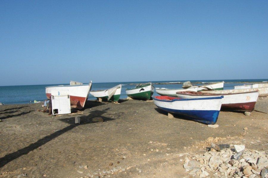 Barques à Calheta. (© Anca MICULA))