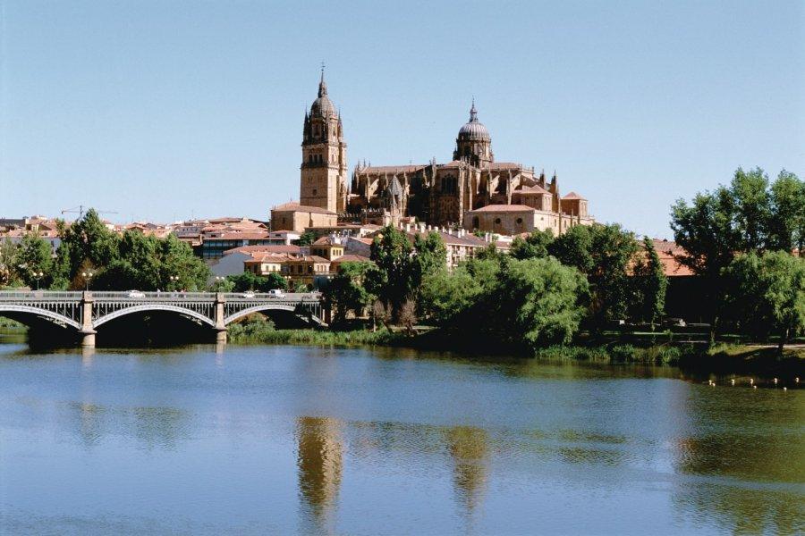 Vue sur la ville de Salamanque et sa cathédrale. (© Author's Image))