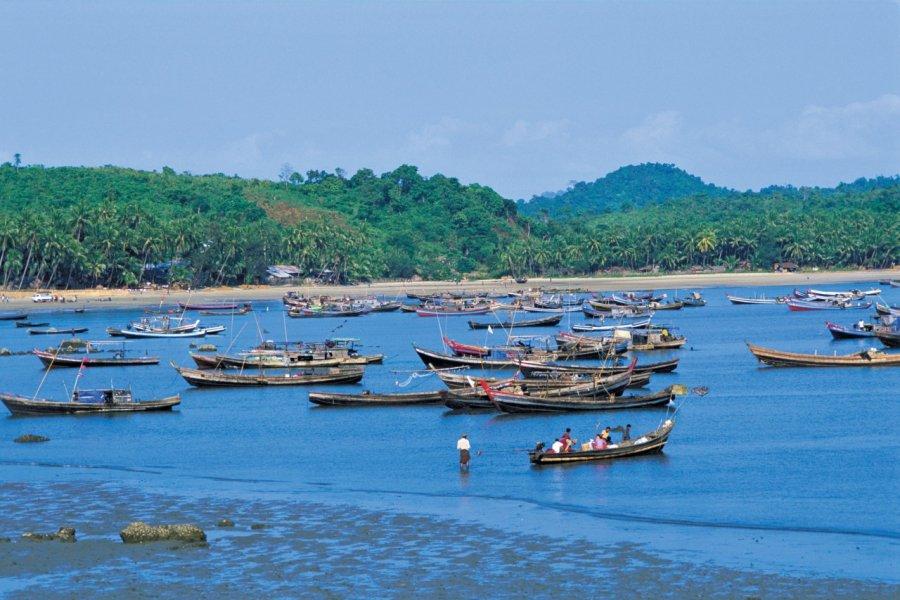 Paysage des environs de Ngapali. (© Alamer - Iconotec))