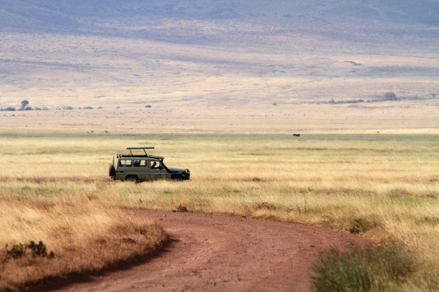 Safari dans l'aire de conservation du Ngorongoro (© Stephan SZEREMETA))
