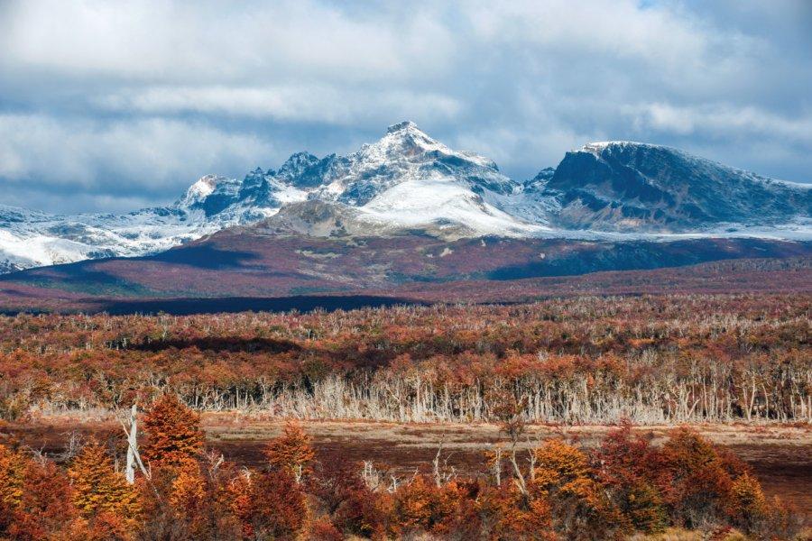 L'automne en Terre-de-Feu (© Kseniya Ragozina))