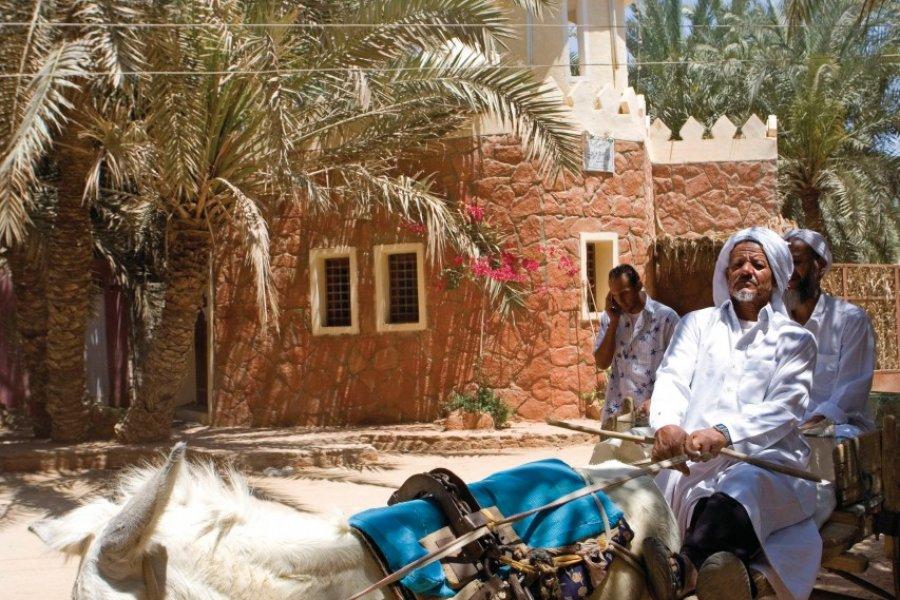 Oasis de Siwa dans le désert Libyque. (© Sylvain GRANDADAM))