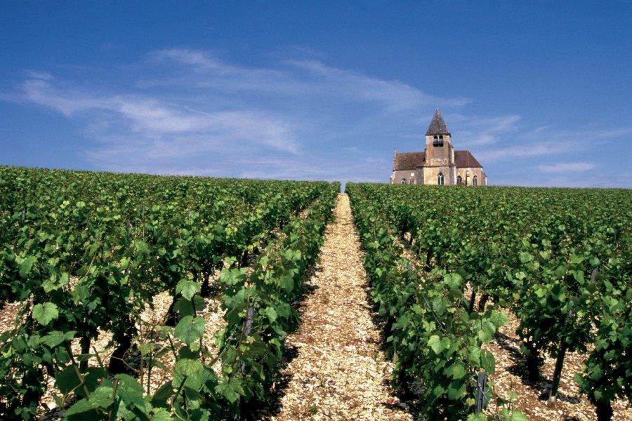 L'église de Préhy, dans le vignoble de Chablis. (© AM stock nature))