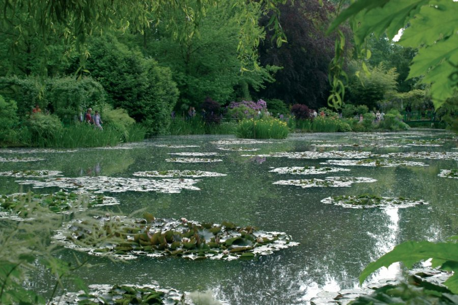 Jardins de Claude Monet, Giverny - Le Jardin d'Eau (© Stéphan SZEREMETA))