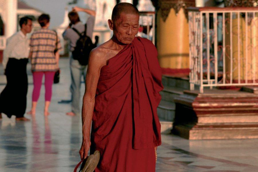 Moine à la pagode Shwedagon. (© Author's Image))