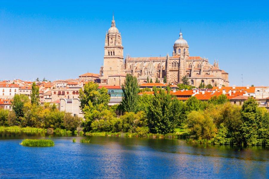 Cathédrale de Salamanque. (© saiko3p - Shutterstock.com))