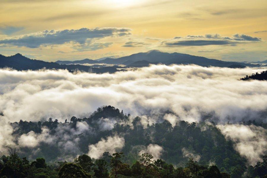 Lever du soleil sur la vallée du Danum. (© Cn0ra - iStockphoto.com))