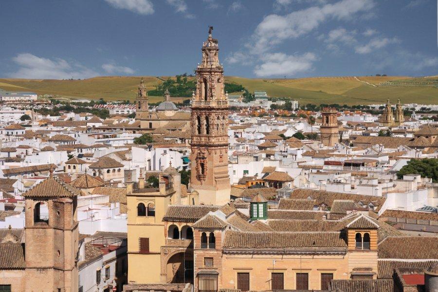 Vue de la ville d'Ecija. (© Caminos de Pasión))