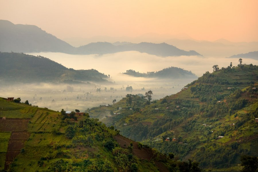 Chaîne des Virunga dans la brume matinale. (© Martin Mecnarowski - Shutterstock.com))