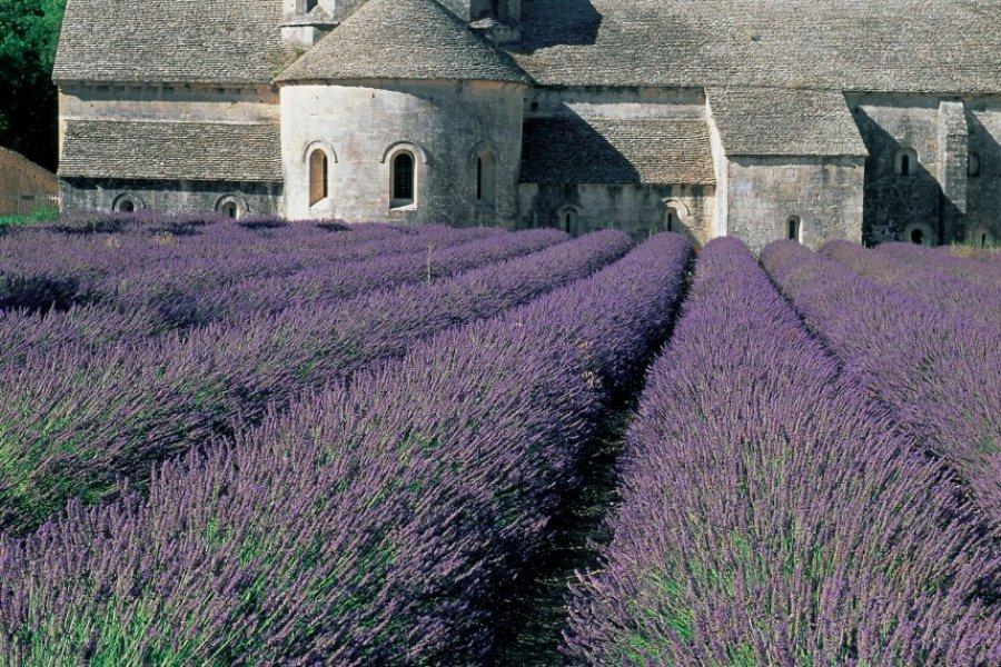 L'abbaye Notre-Dame-de-Sénanque - Gordes (© HUGO CANABI - ICONOTEC))