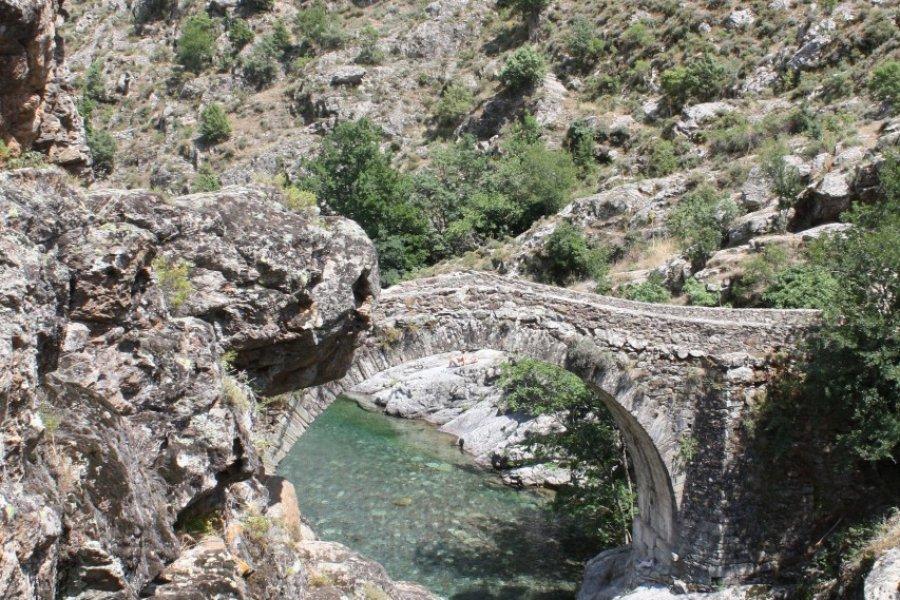 Pont génois sur la rivière de l'Asco. (© Xavier BONNIN))