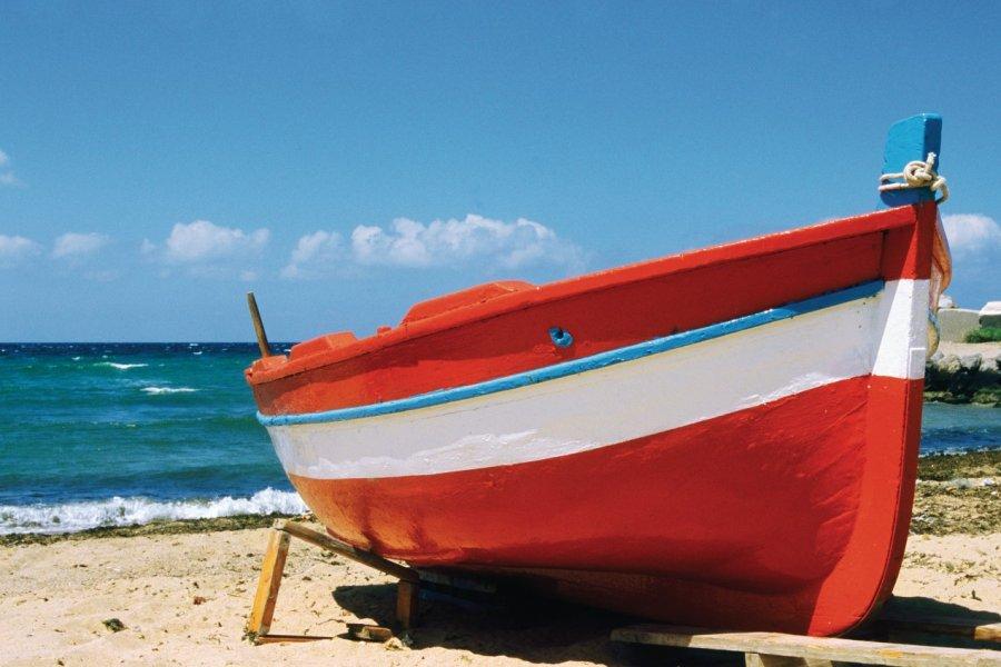Bateaux de pêches à Palerme. (© Author's Image))