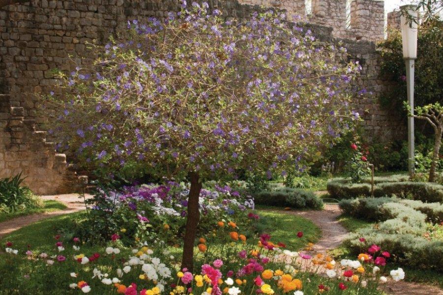 Dans le jardin du château de Tavira. (© Maxence Gorréguès))