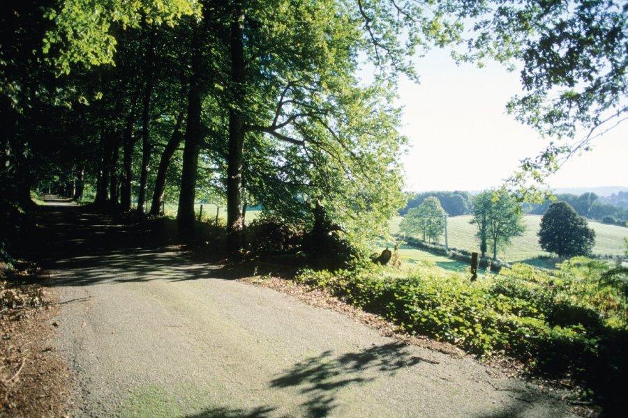 Parc du château de Montméry (© Florent RECLUS - Author's Image))