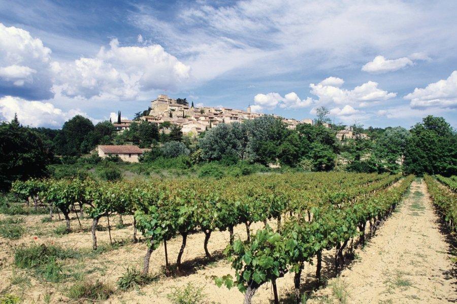 Vignoble et vue d'Ansouis au loin (© Irène ALASTRUEY - Author's Image))