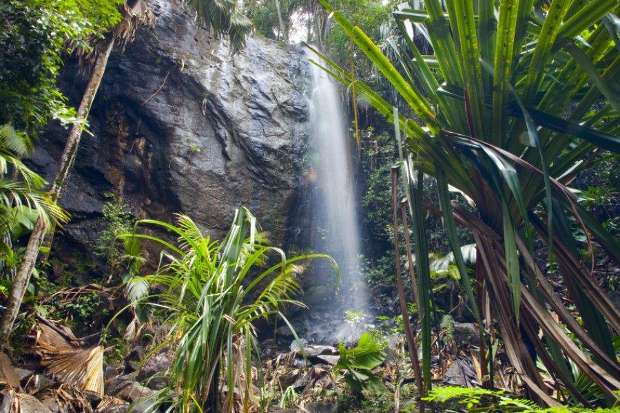 Vallée de mai. (© Kanea - Shutterstock.com))