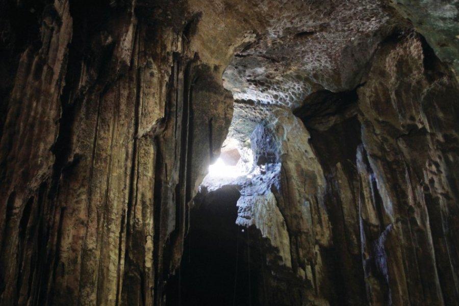 Grottes de Gomantong (© Stéphan SZEREMETA))