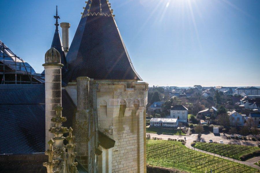 Château de Saumur. (© Christophe Gagneux - Pixim))