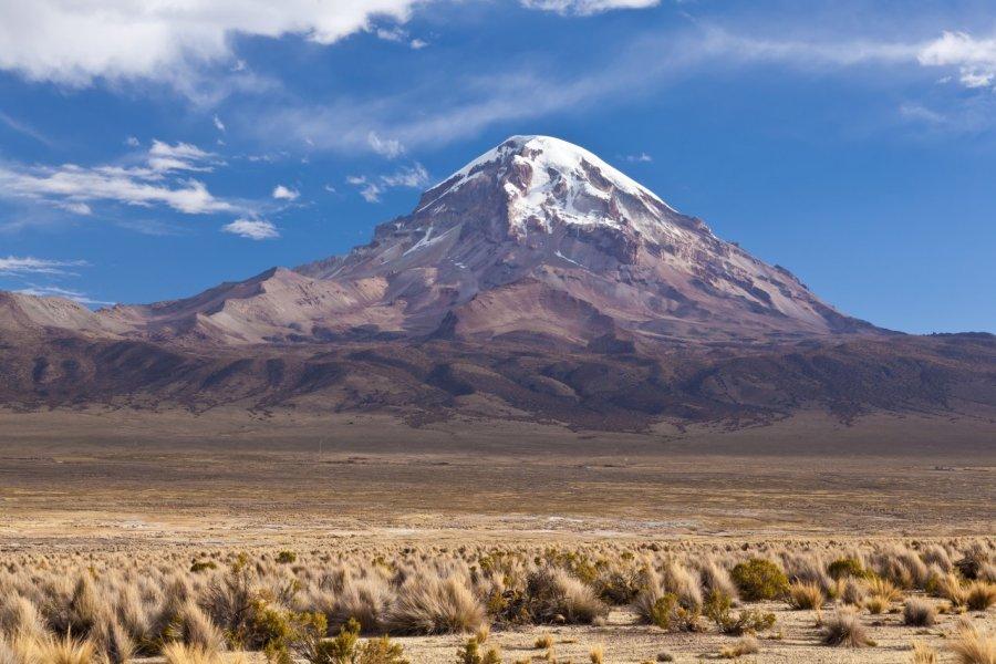 Les volcans Parinacota et Pomerape. (© Berzina / Shutterstock.com))