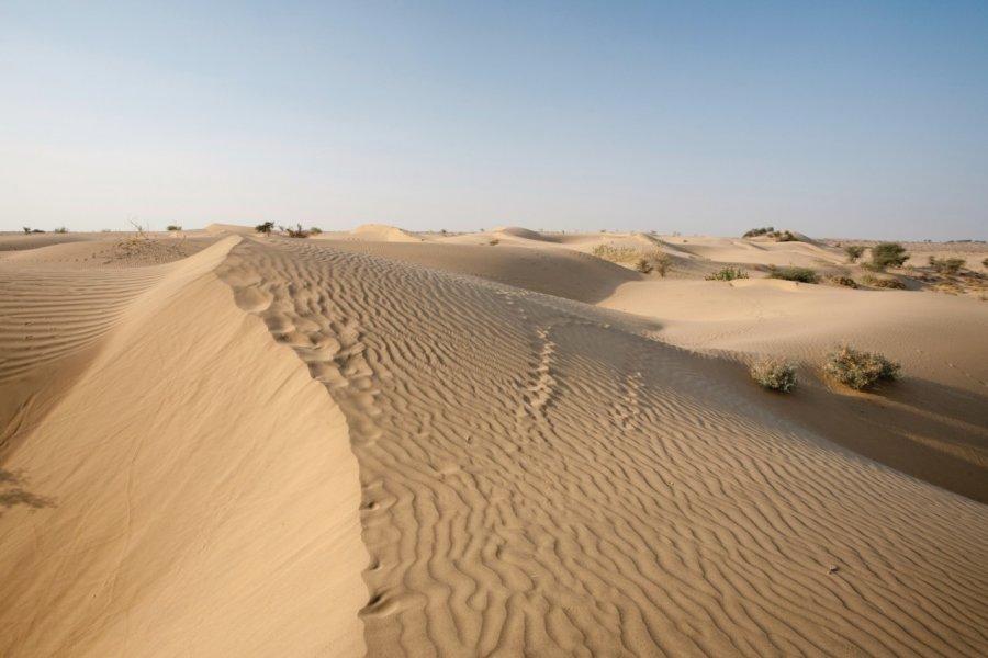 Dunes de Sam. (© Pius99 - iStockphoto))