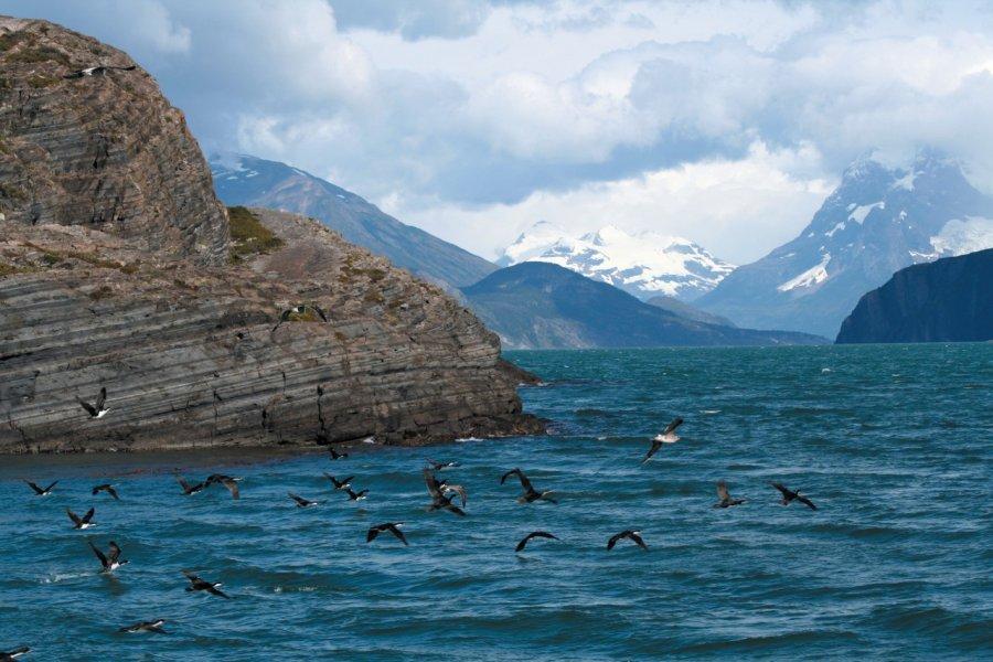 Navigation vers le glacier Balmaceda (© Arnaud BONNEFOY))