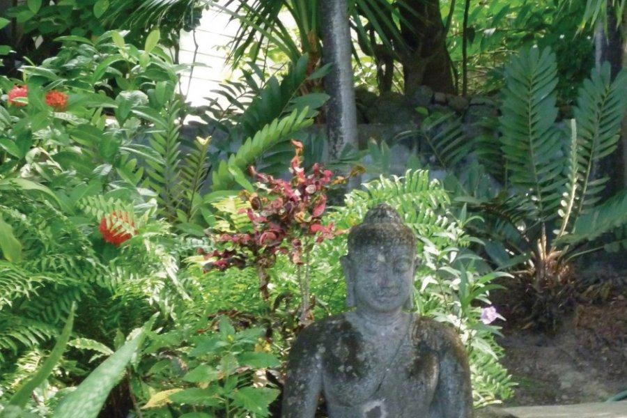 Jardin à Mustique. (© Jean Charles Dusanter))