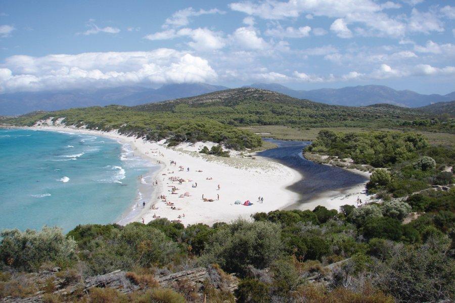 La plage de Saleccia (© CastaLibre - Fotolia))