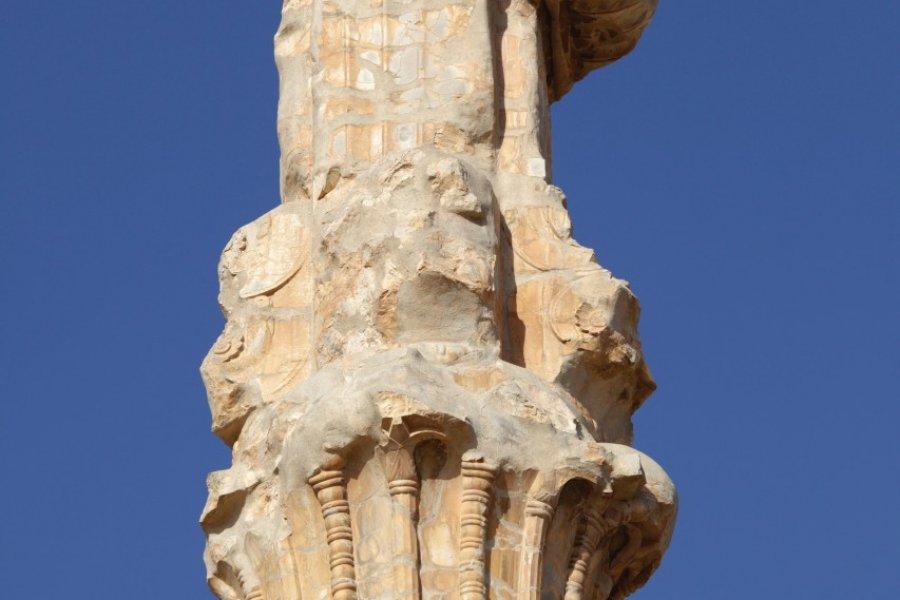 Ancienne colonne à Persépolis. (© Massimo Pizzotti))