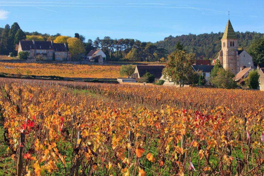 Vue sur Fixin. (© andre quinou - Shutterstock.com))
