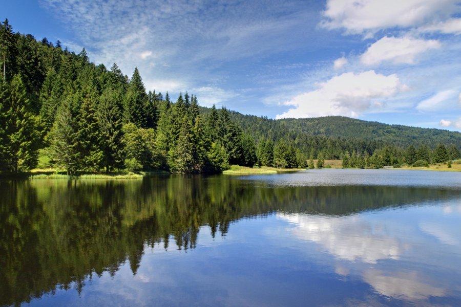 Miroir de la nature - lac de la Seigneurie. (© Olympixel))
