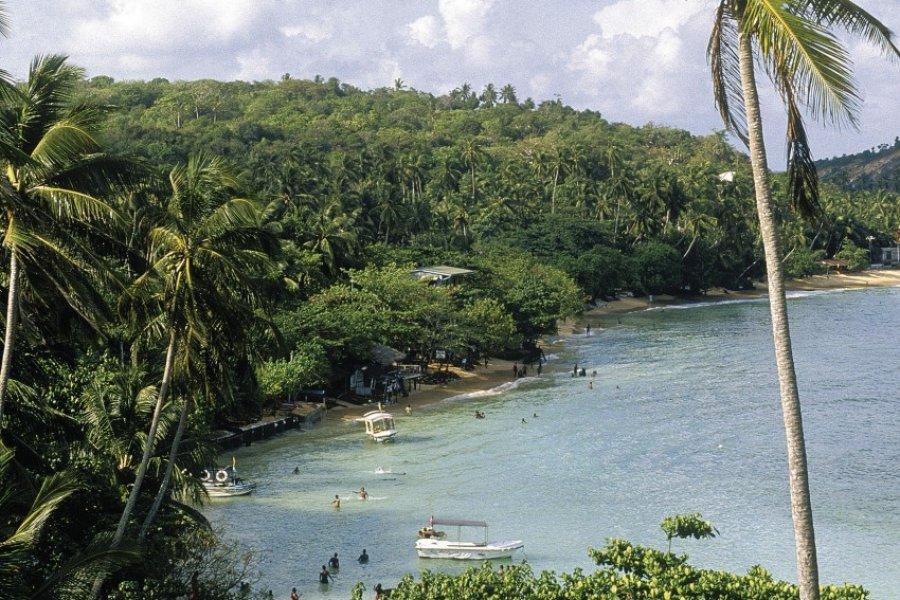 Jungle et plage (© Eric Martin - Iconotec))