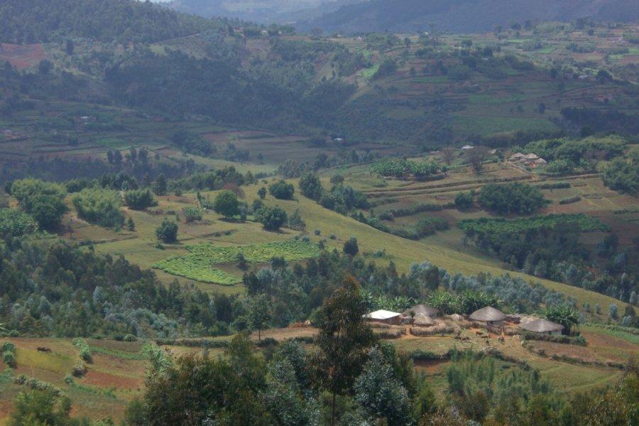 Paysage du Mugamba. (© Christine DESLAURIER))