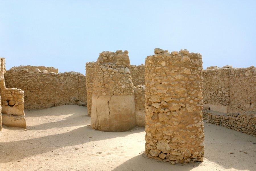 Site archéologique de Saar. (© Dr Ajay Kumar Singh - Shutterstock.com))