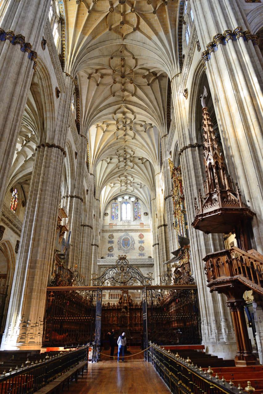 Cathédrale de Salamanque. (© Julian Maldonado - Shutterstock.com))