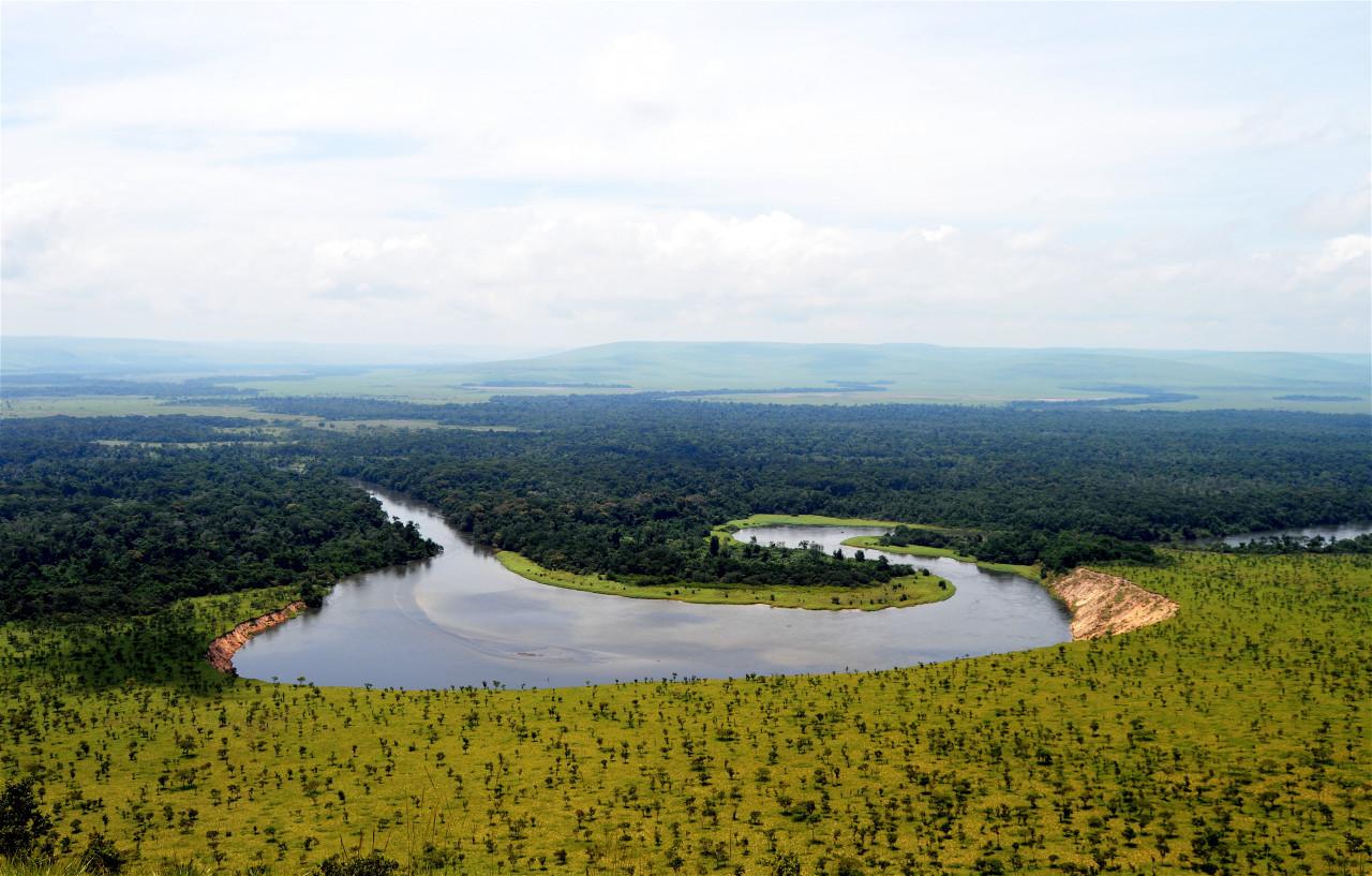 La Louna, dans la réserve Lésio-Louna. (© Benoît Lognoné))