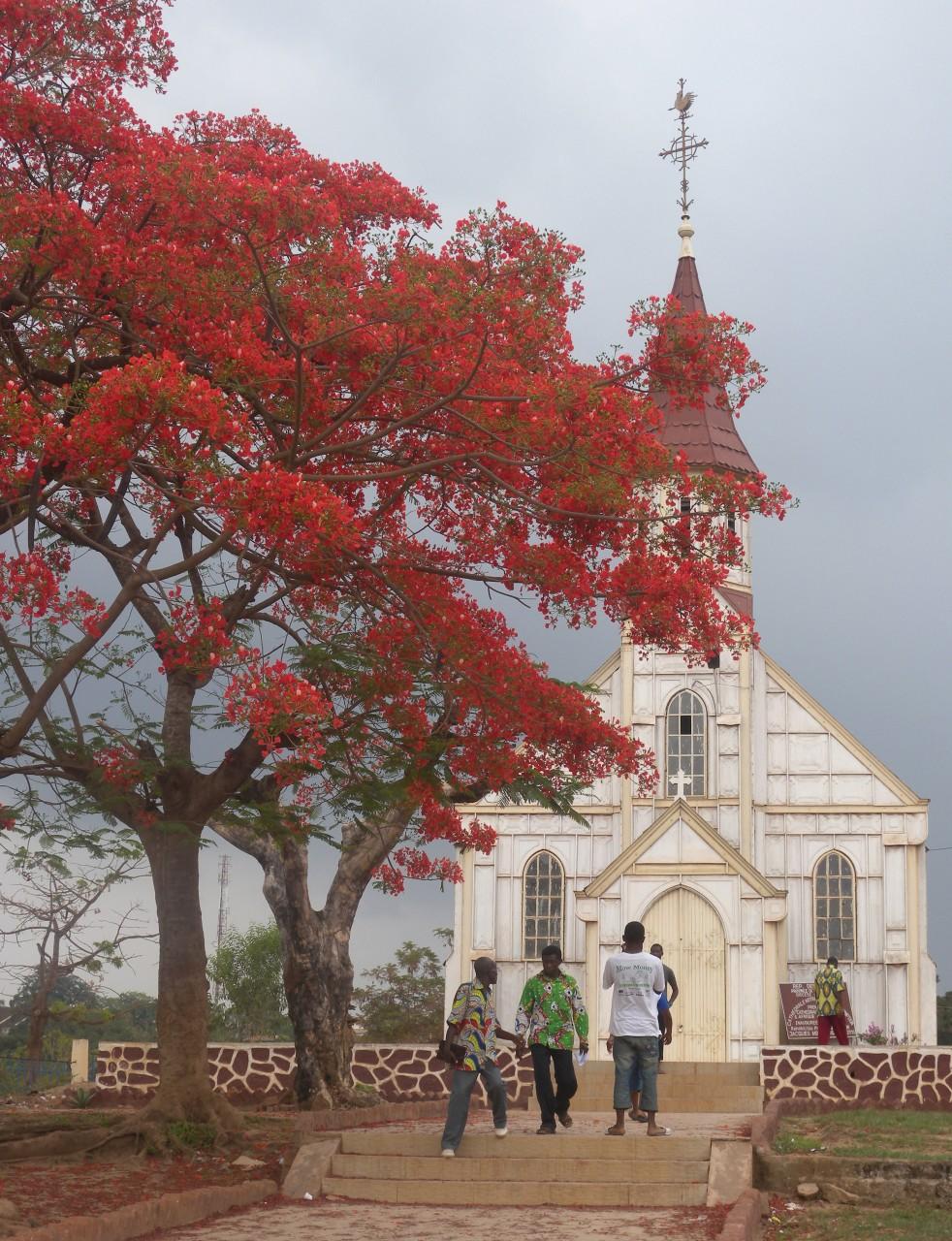 La Cathédrale ND de l'Assomption à Boma (© M. Gemoets))