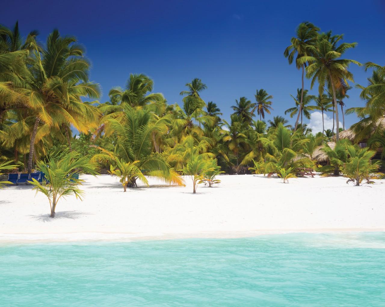 Paradis tropical sur l'île de Saona.