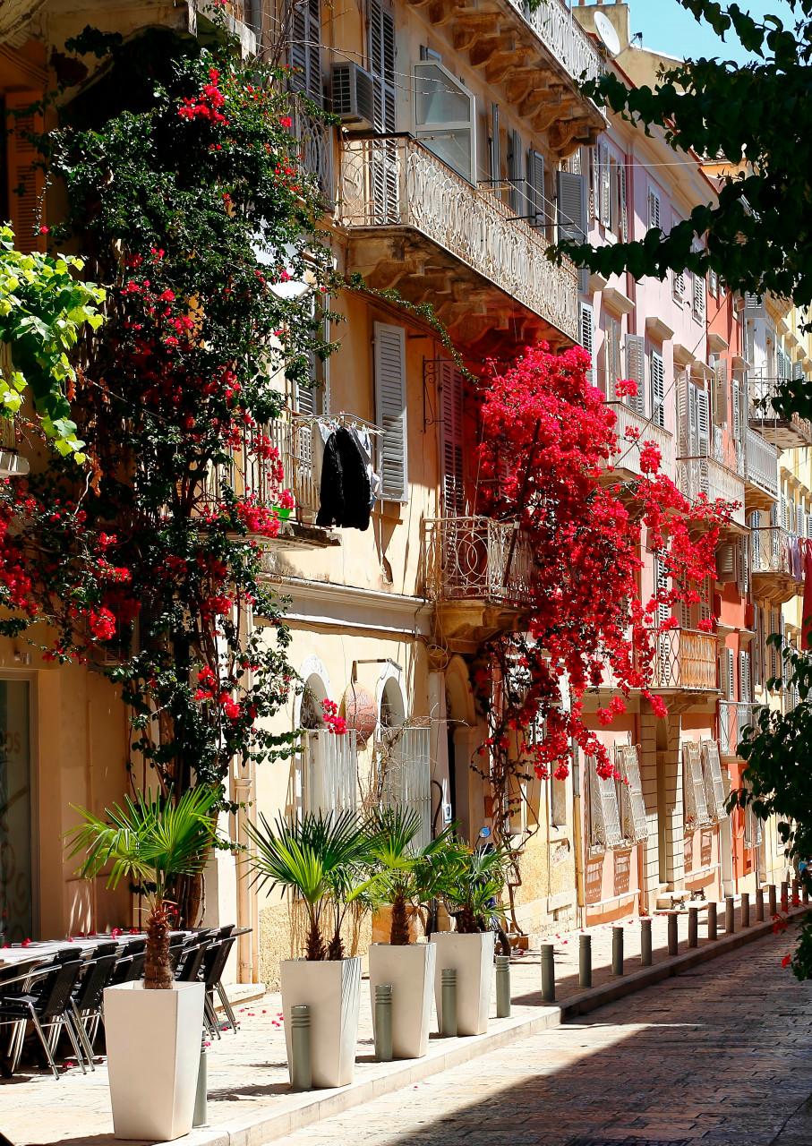 Rue fleurie de Corfou. (© ZoranKrstic - Adobestock.com))