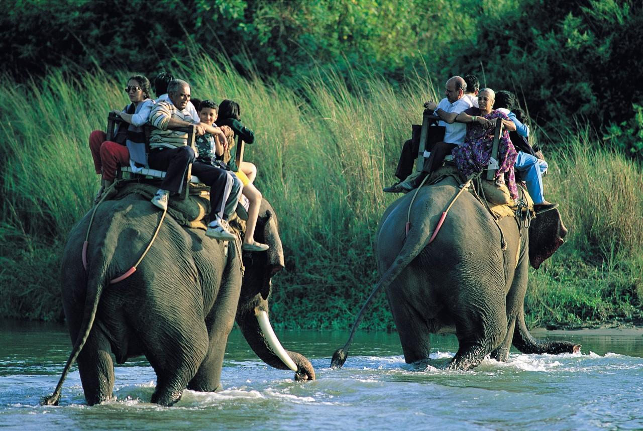 Parc national de Chitwan où l'on se promene à dos d'éléphant. (© Hugo Canabi - Iconotec))