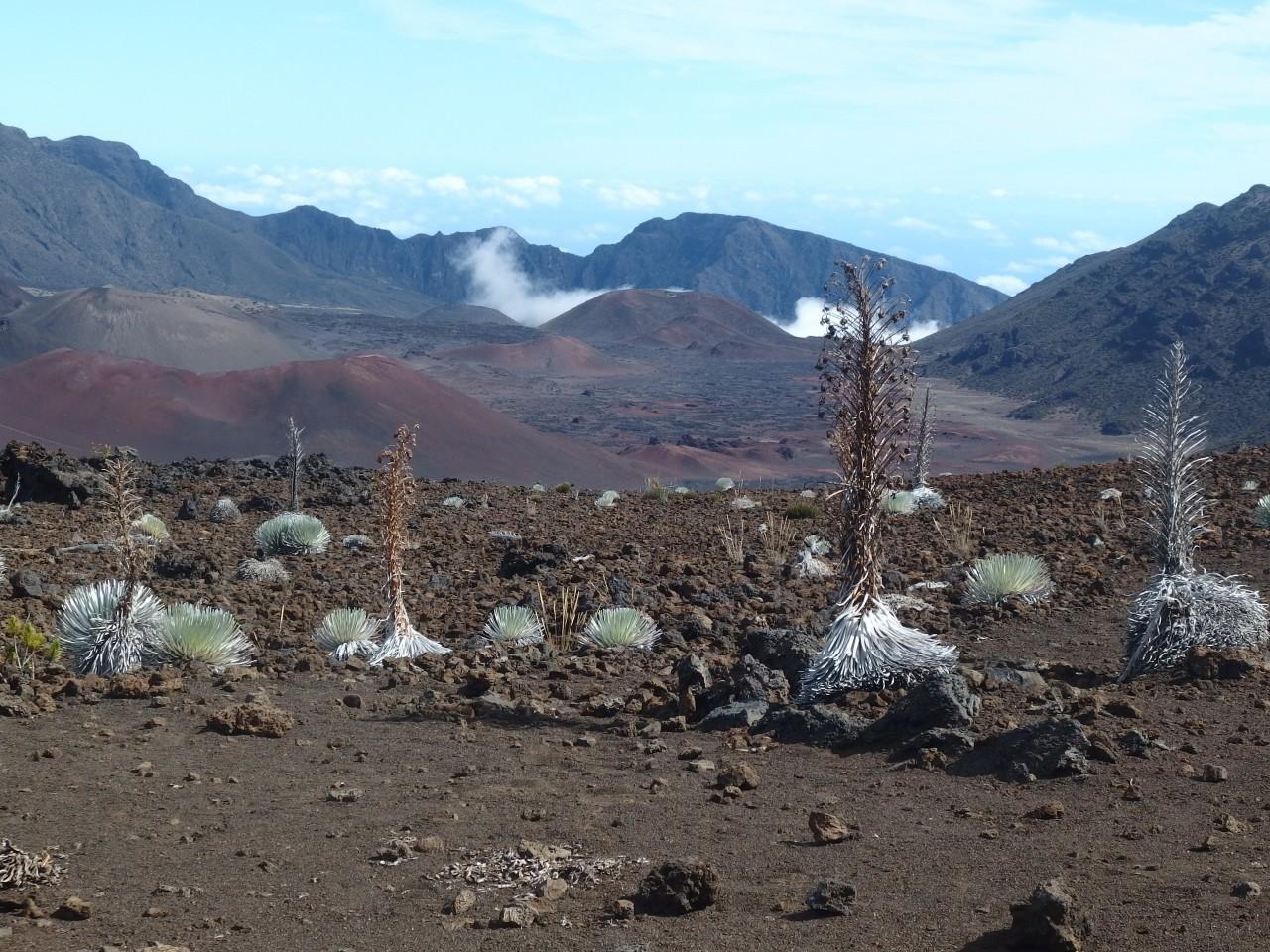 Cratère de Haleakala.