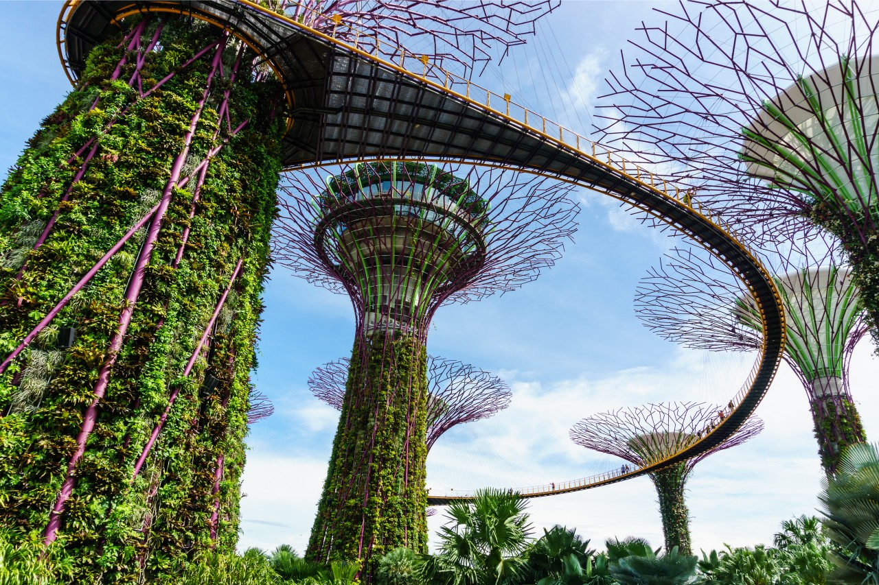 The metal trees of Garden by the Bay.
