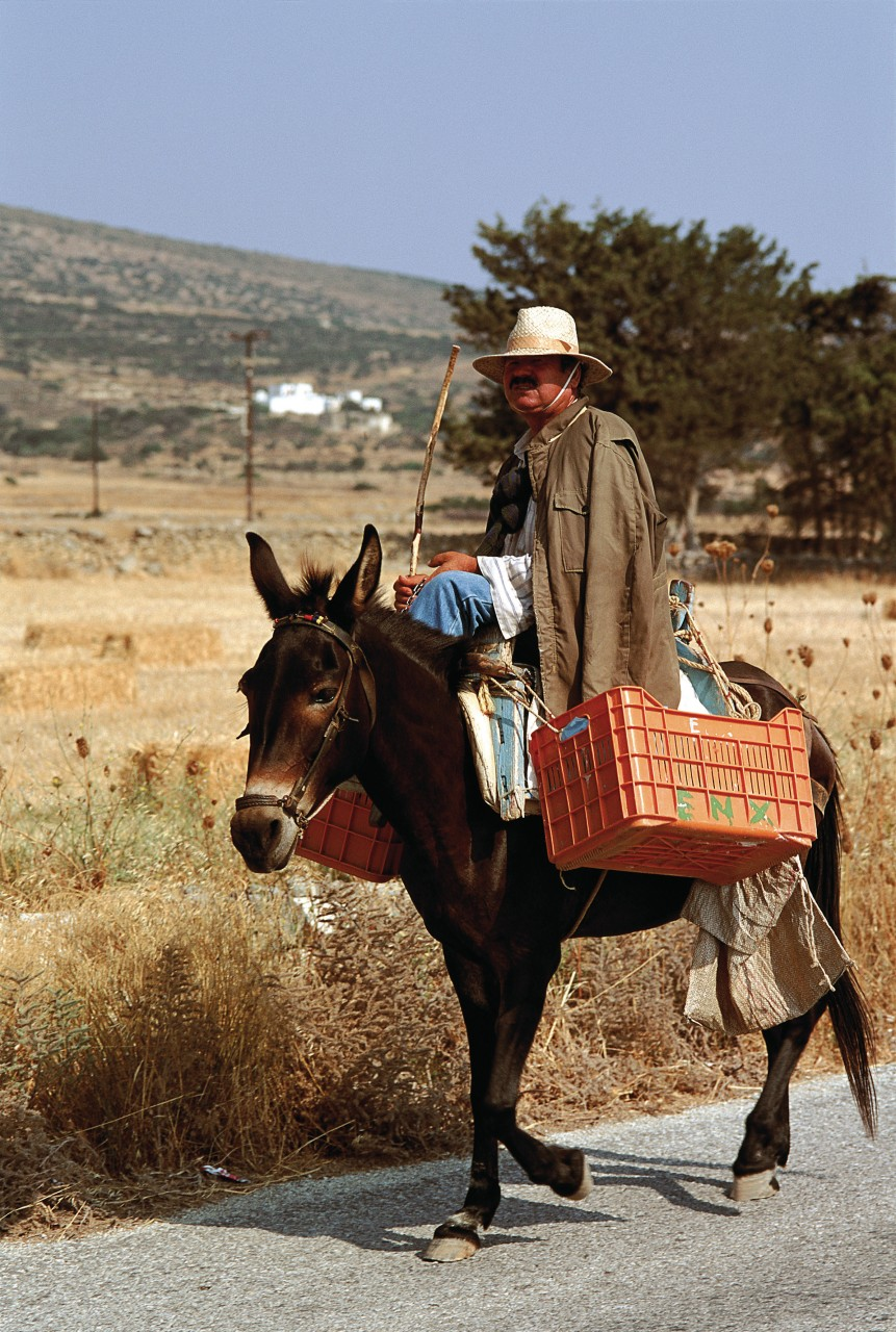 Transport à dos d'âne. (© Author's Image))
