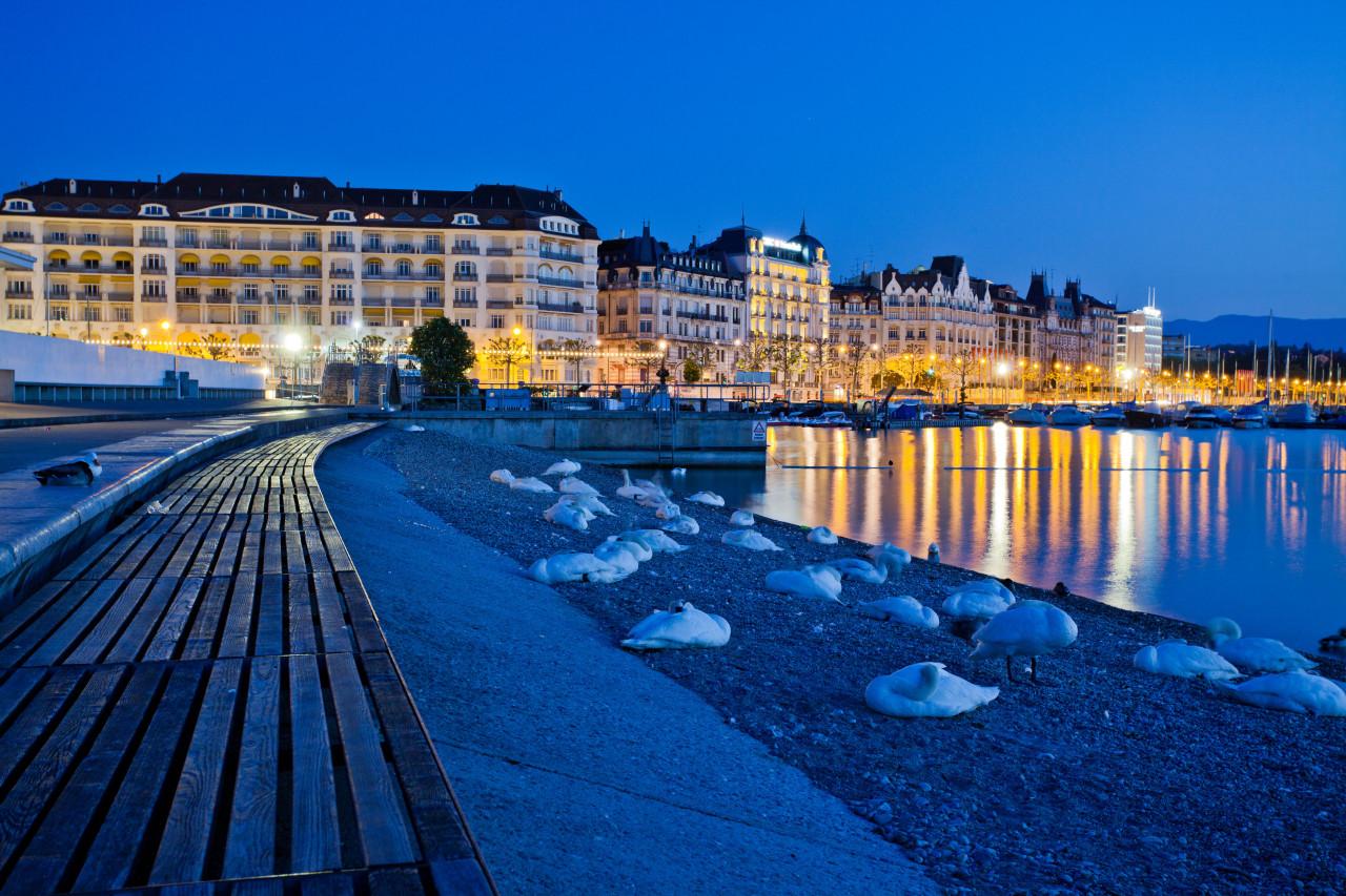 El puerto de Ginebra nocturno.