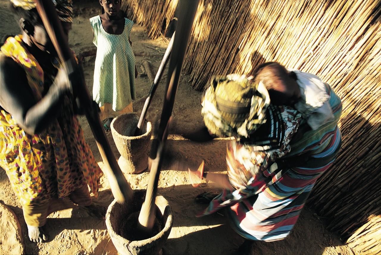 Mujeres picando el centavo.