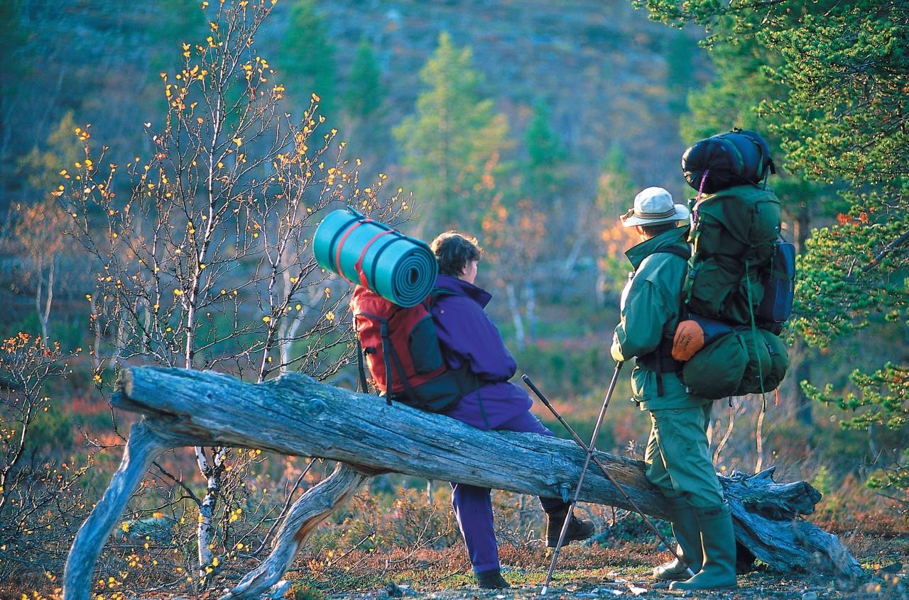 Hiking in Urho Kekkonen National Park