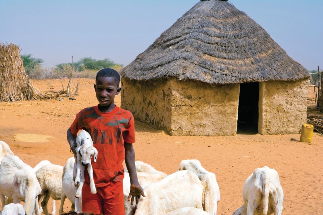 Village de brousse peul. (© Author's Image))