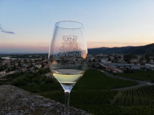 vigne - ©CAVE DE TAIN L'HERMITAGE