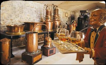 DISTILLERIE LOUIS-ROQUE Vins – Alcools Souillac photo n° 108816 - ©DISTILLERIE LOUIS-ROQUE