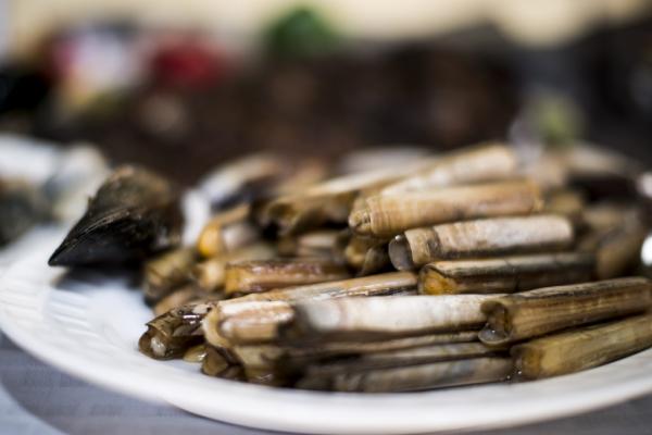 Razor clams - ©ZAHRA'S GRILL